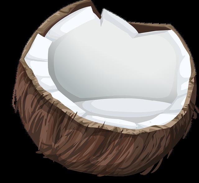 coconut-575780_640